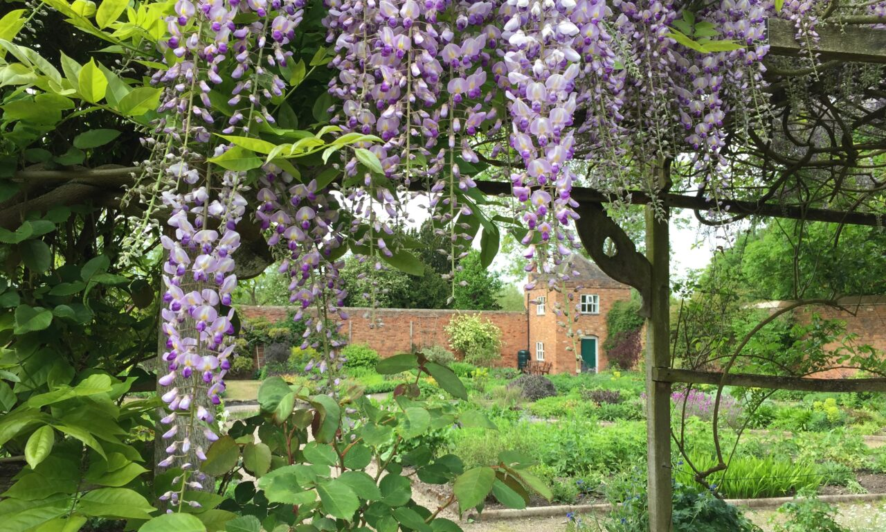 Middleton Hall & Gardens